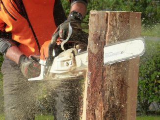 The Ultimate Chainsaw Buyers Guide 1