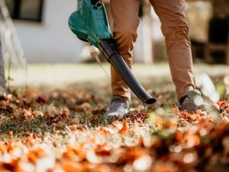 Leaf Blower Buyers Guide