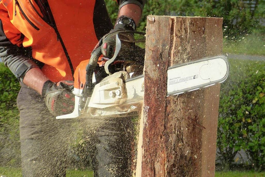 Petrol Chainsaw Buyer's Guide