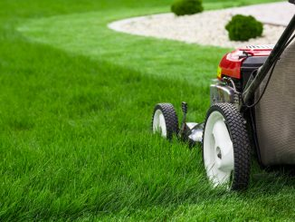 Lawn Mower for Stripes