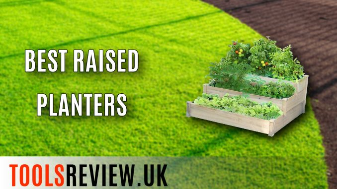 Best Raised Planters
